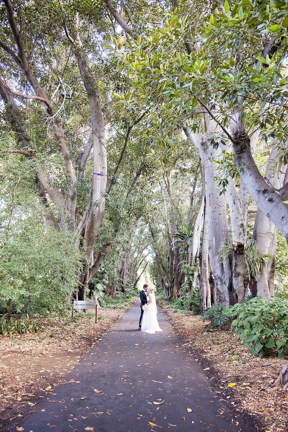 Stunning Adelaide Botanic Gardens Wedding 37.jpg