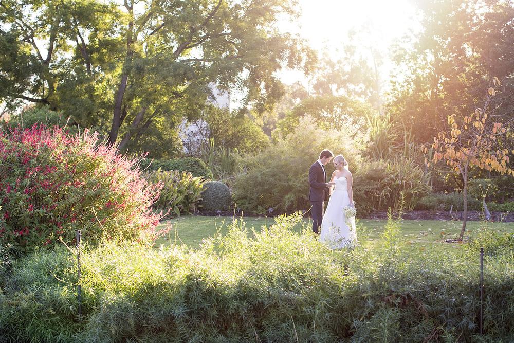 Stunning Adelaide Botanic Gardens Wedding 39.jpg