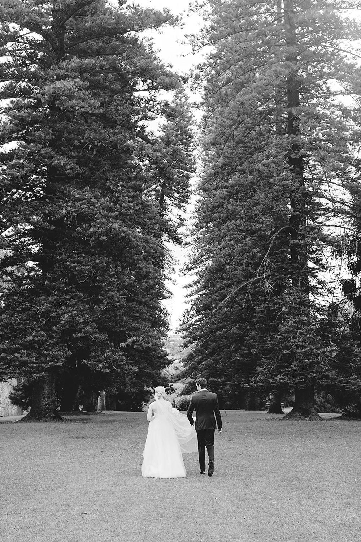 Stunning Adelaide Botanic Gardens Wedding 42.jpg