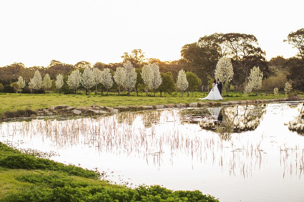 Gorgeous Al Ru Farm Wedding 62.jpg