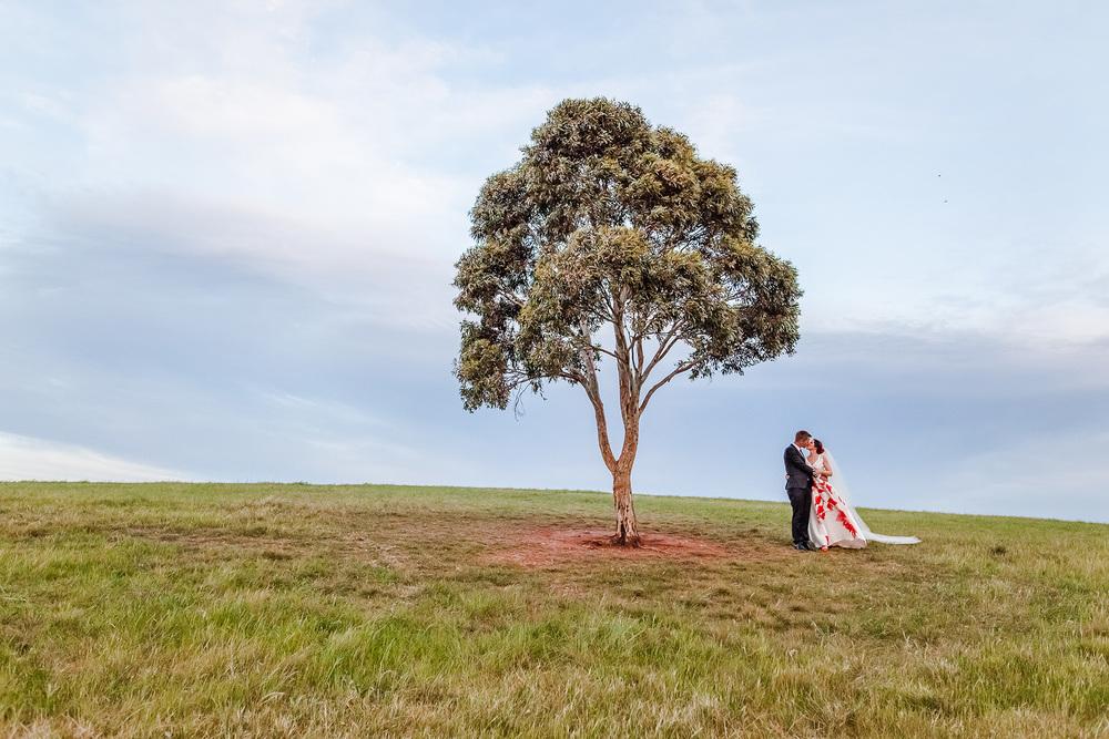 Creative DIY Backyard Wedding 43.jpg