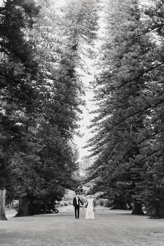 North Adelaide Botanic Wedding 22.jpg