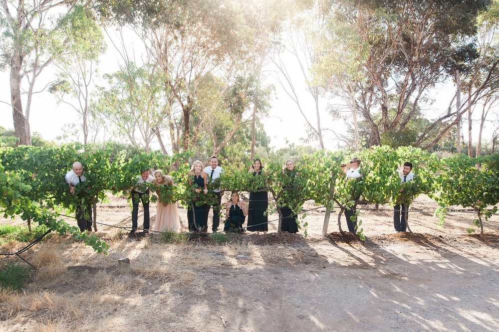 Red Poles Wedding McLaren Vale 24.jpg