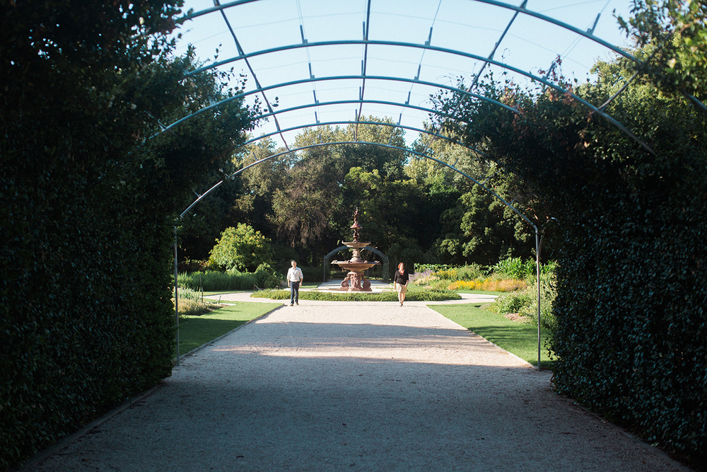 Adelaide Botanic Gardens Portrait Session 06.jpg