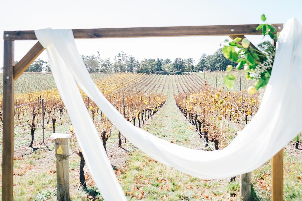 Beautiful Paracombe Winery Wedding 15.jpg