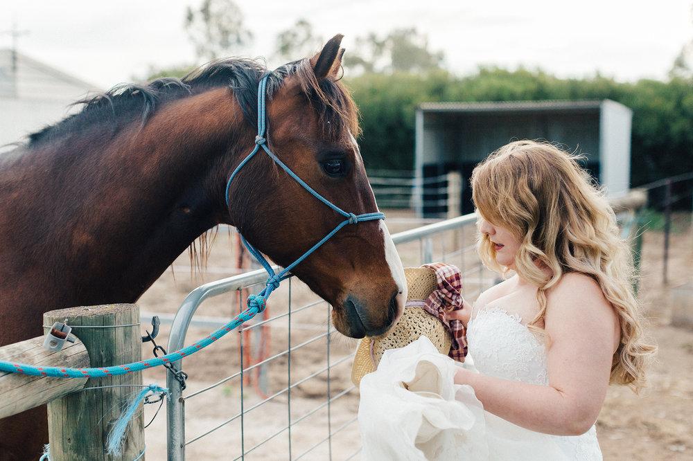 Bridal Portraits Horses 003.jpg