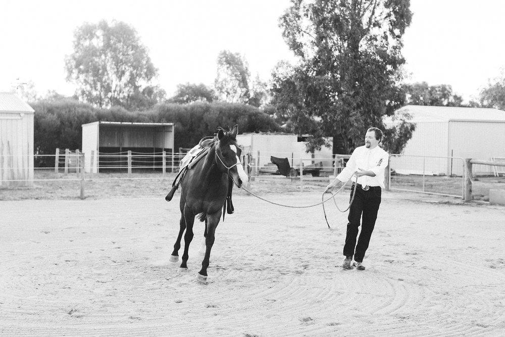 Bridal Portraits Horses 008.jpg