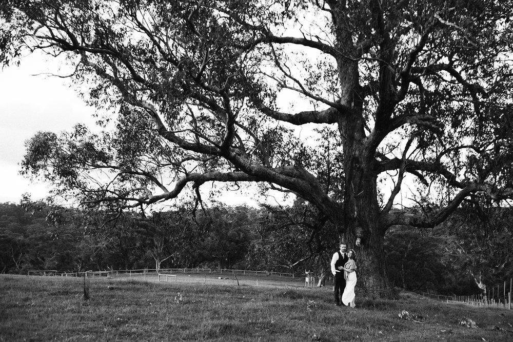 Rustic Sinclairs Gully Wedding 83.jpg