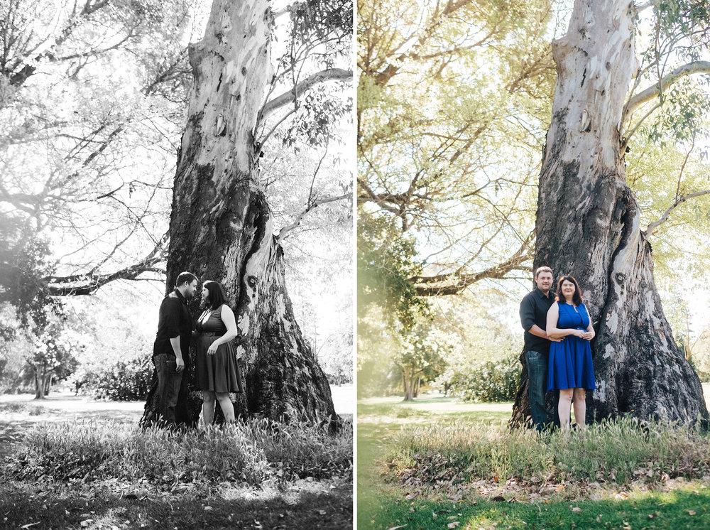 Botanic Portrait Session Adelaide 01.jpg