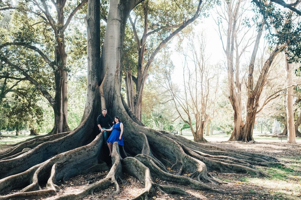 Botanic Portrait Session Adelaide 06.jpg