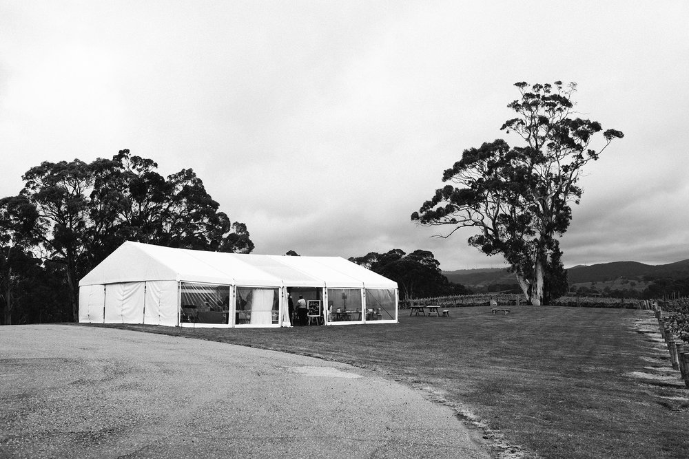 Nepenthe Winery Wedding Adelaide Star Wars 20.jpg