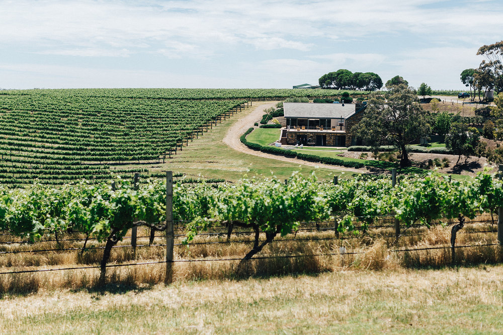 Chapel Hill Winery Wedding 007.jpg