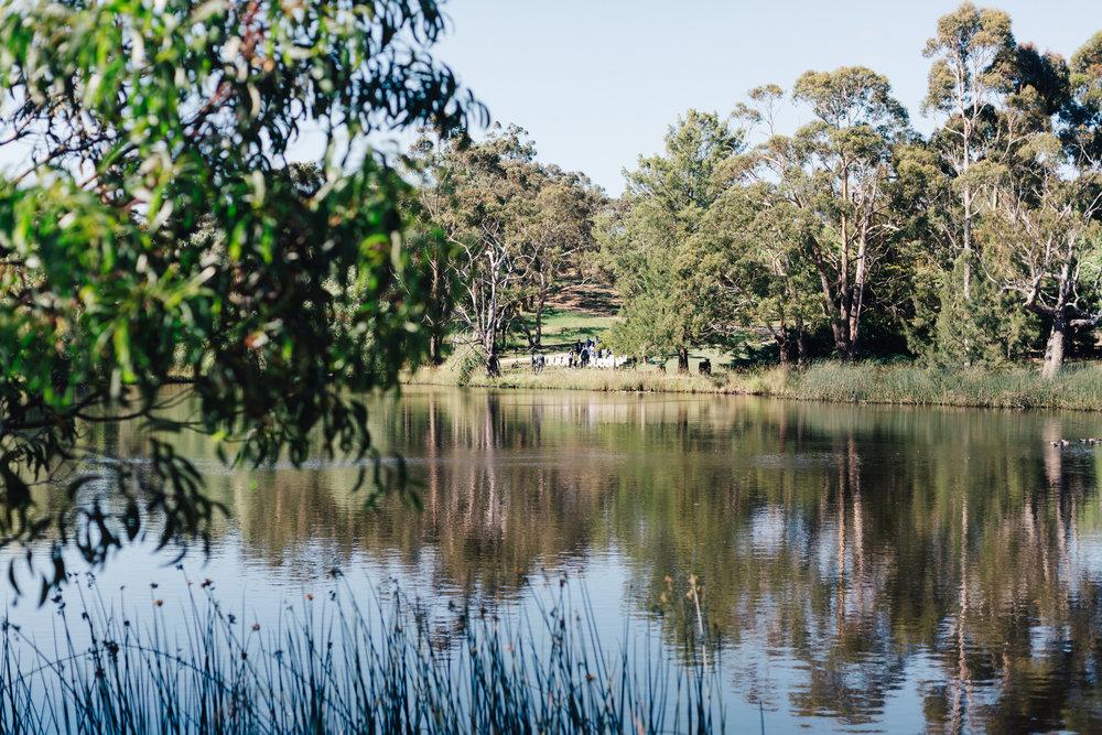 K1 Winery Wedding Adelaide Hills 013.jpg