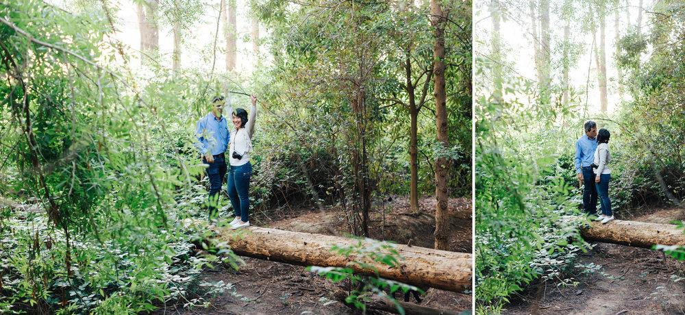 Blackwood Forest Engagement Session 11.jpg