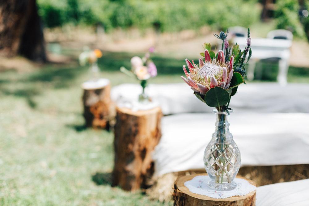 australia-day-backyard-vineyard-wedding-17.jpg