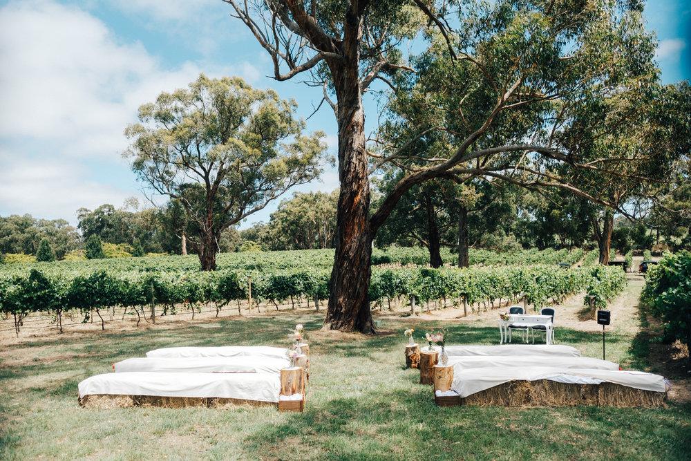 australia-day-backyard-vineyard-wedding-19.jpg