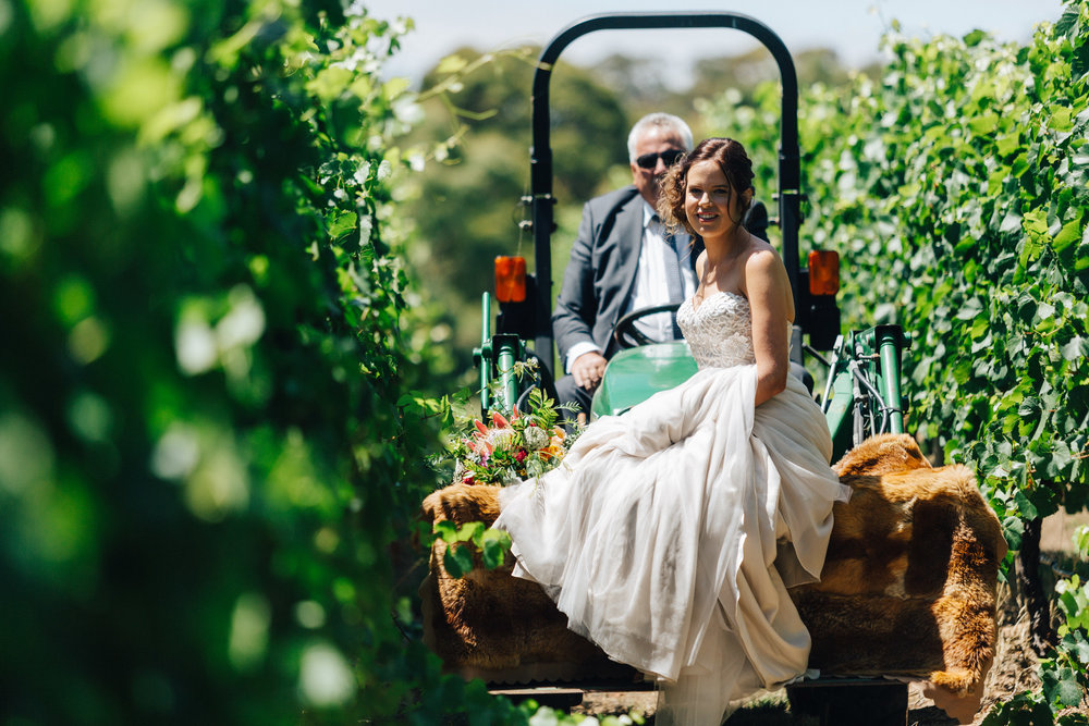 australia-day-backyard-vineyard-wedding-23.jpg