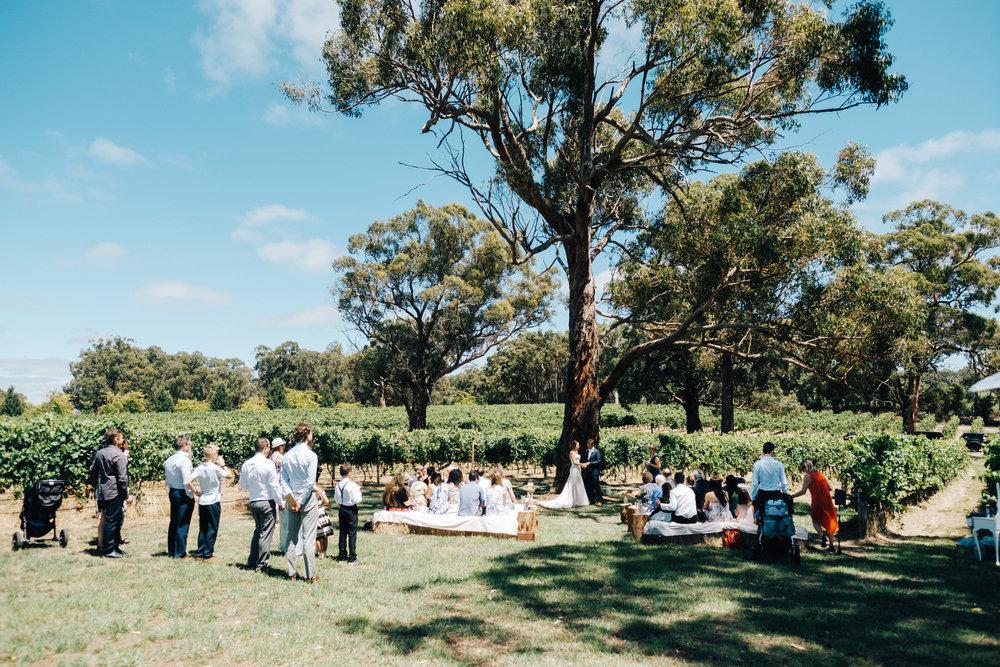 australia-day-backyard-vineyard-wedding-28.jpg