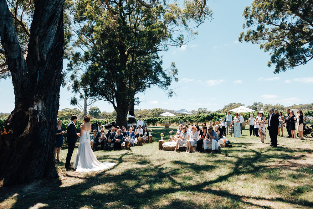 australia-day-backyard-vineyard-wedding-30.jpg