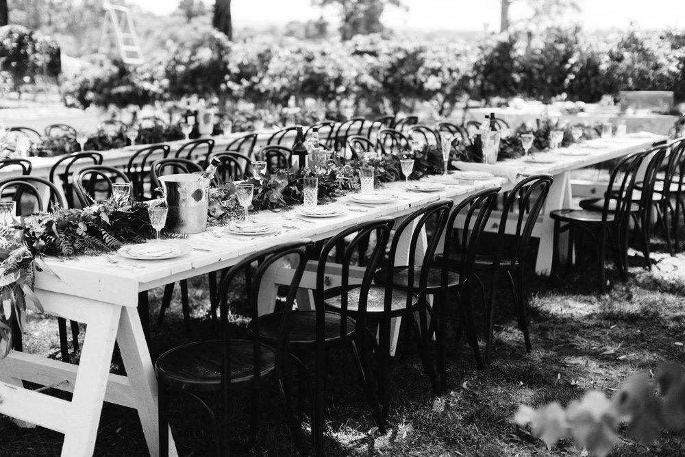 australia-day-backyard-vineyard-wedding-49.jpg