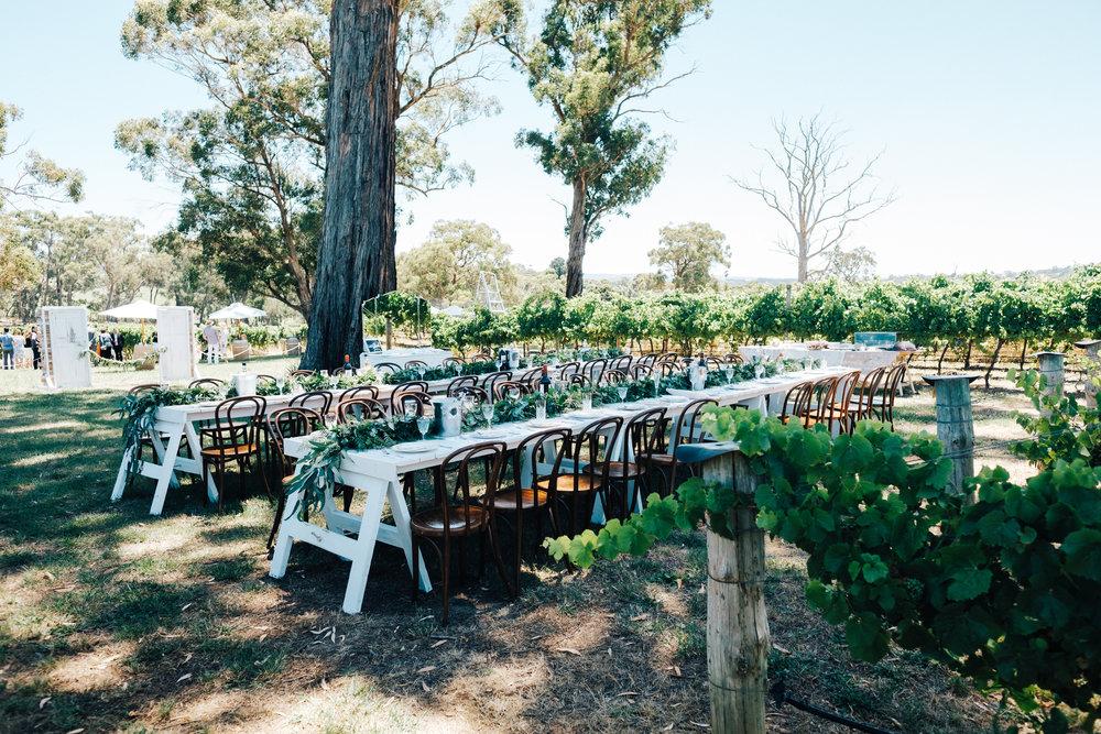 australia-day-backyard-vineyard-wedding-48.jpg