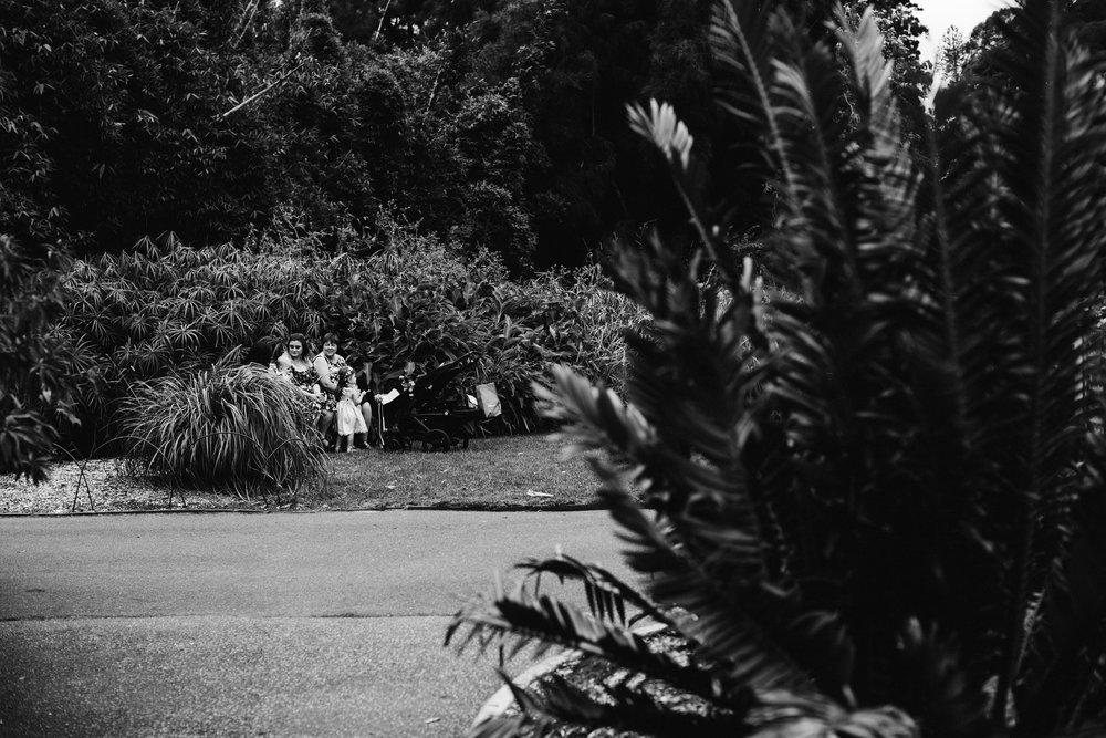 Adelaide Botanic Garden Elopement 051.jpg