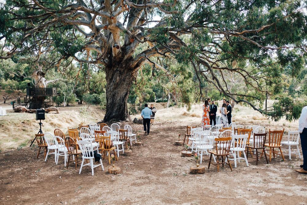 Awesome Brooklyn Farm Wedding SA 036.jpg