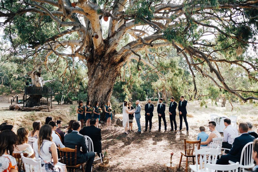 Awesome Brooklyn Farm Wedding SA 047.jpg