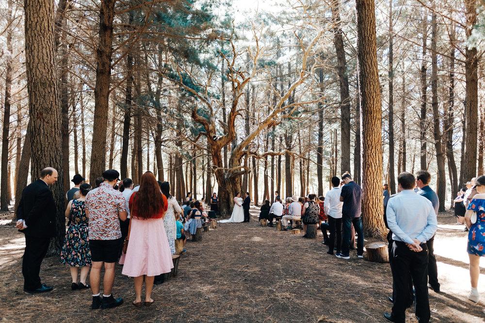 Frances David Kuitpo Wedding 031.jpg