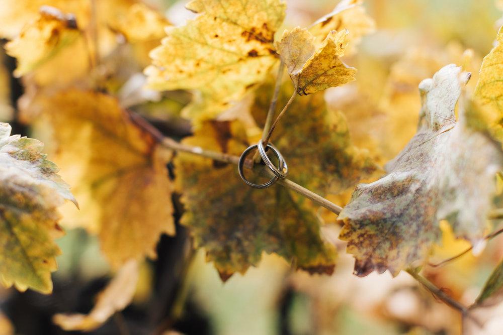 autumn wedding glen ewin estate 002.jpg