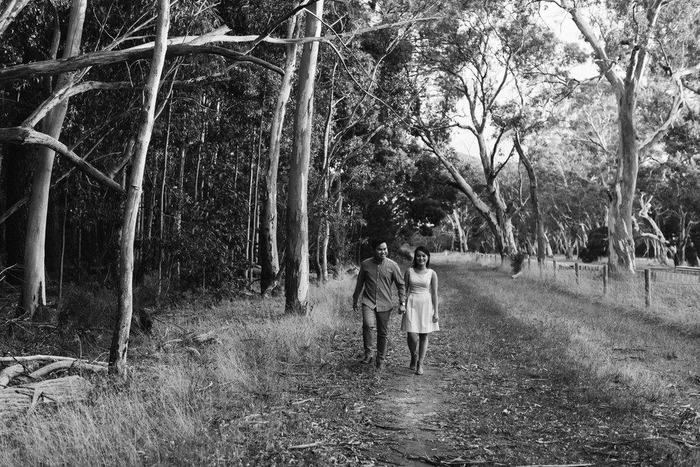 Kuitpo Forest Engagement Portraits 022.jpg