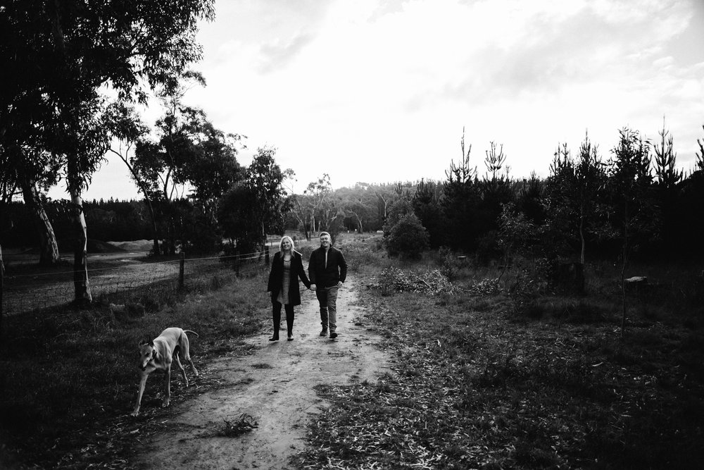Kuitpo Forest Engagement Photo 002.jpg