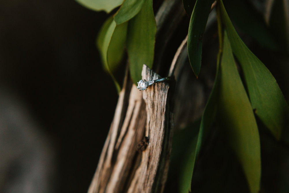 Kuitpo Forest Engagement Photo 019.jpg