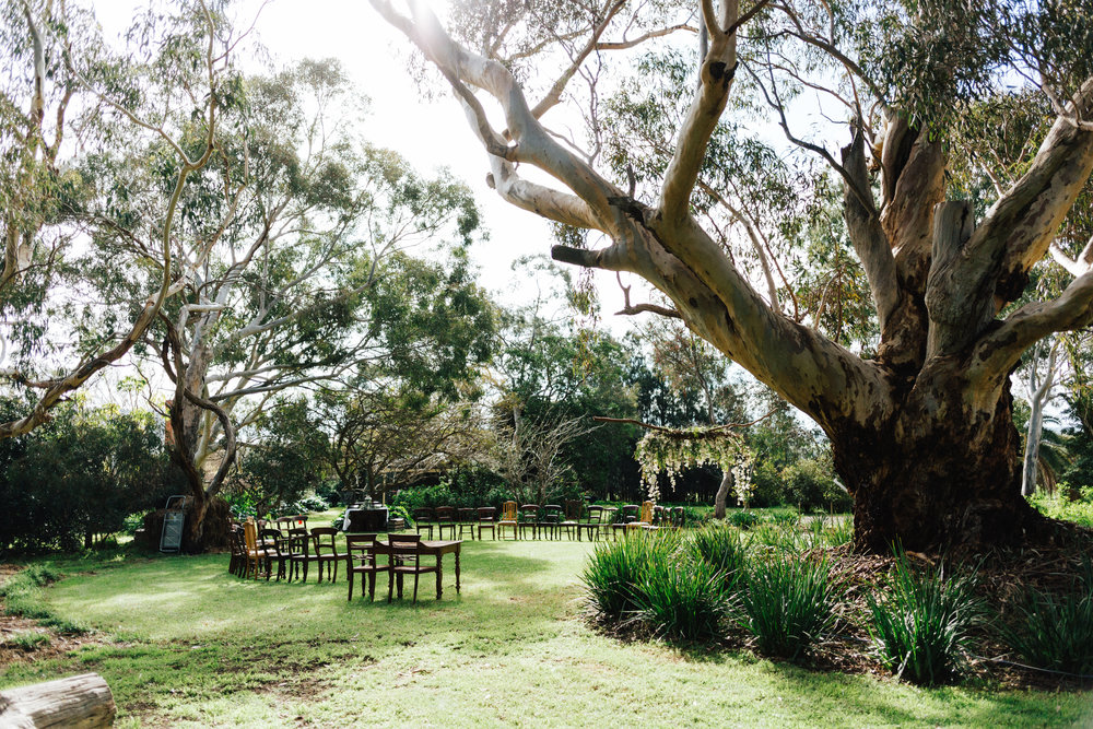 Barn1890 McLaren Vale Winter Wedding 014.jpg