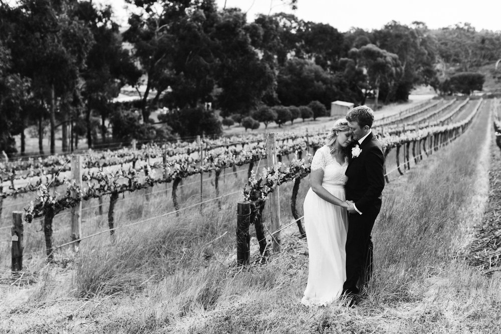 Currant Shed Lunch Wedding McLaren Vale 085.jpg