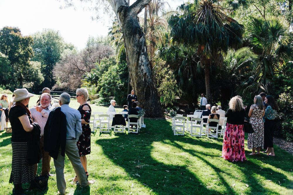 Adelaide Botanic Garden State Library Wedding 023.jpg