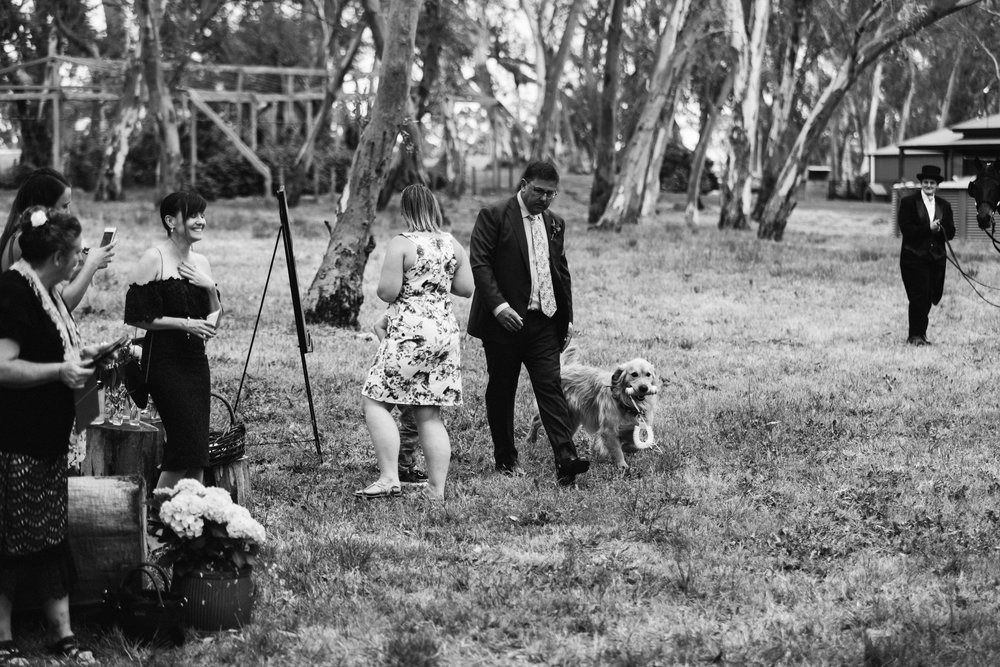 Bohemian Rustic Wedding Barossa 065.jpg
