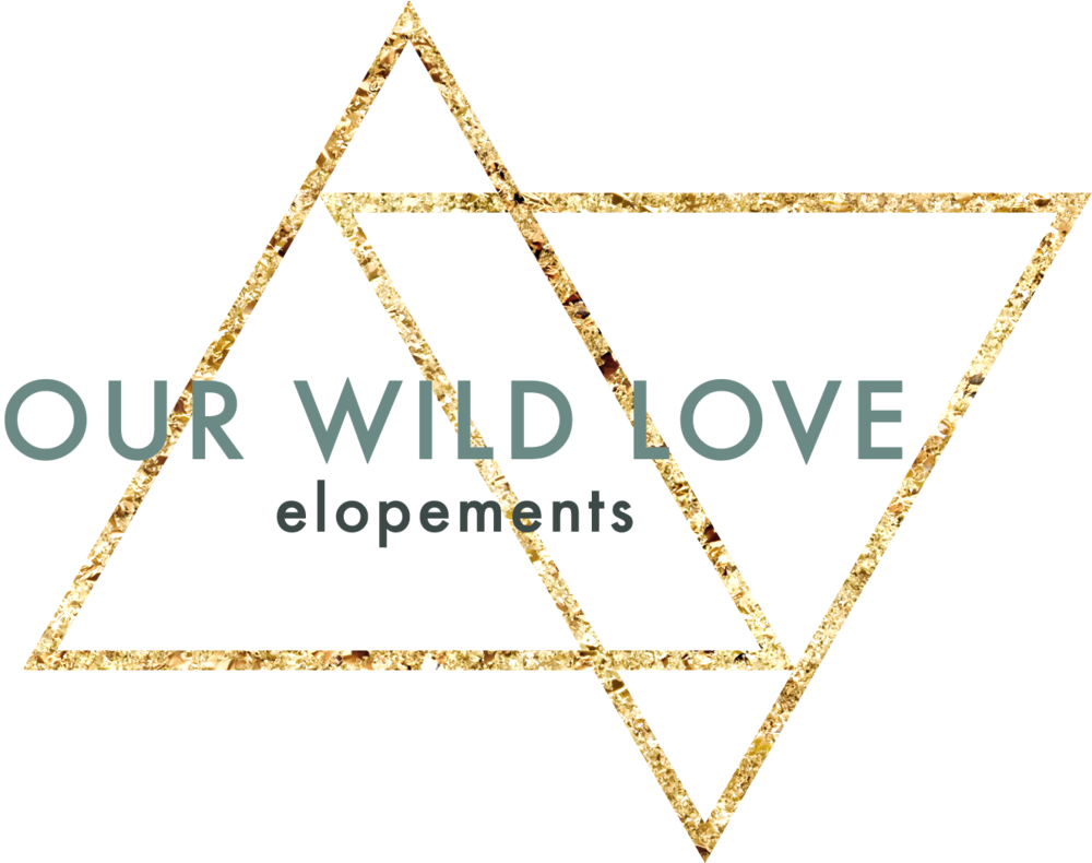 Our Wild Love Logo.png