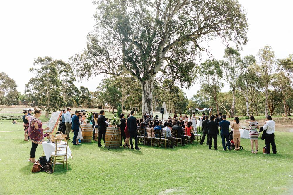 Serafino McLaren Vale Wedding 042.jpg