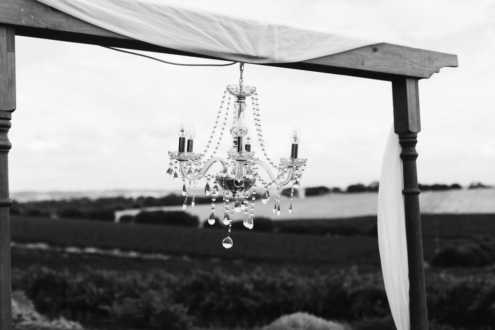 Coriole Vineyard Wedding 010.jpg