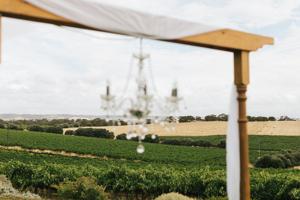 Coriole Vineyard Wedding 011.jpg