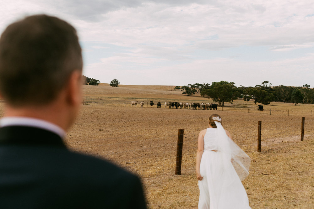 Bungaree Station Country Wedding South Australia 152.jpg