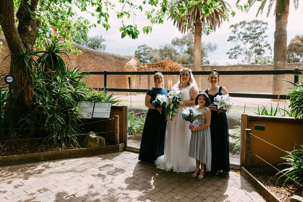 Adelaide Zoo Wedding in the Rain 031.jpg