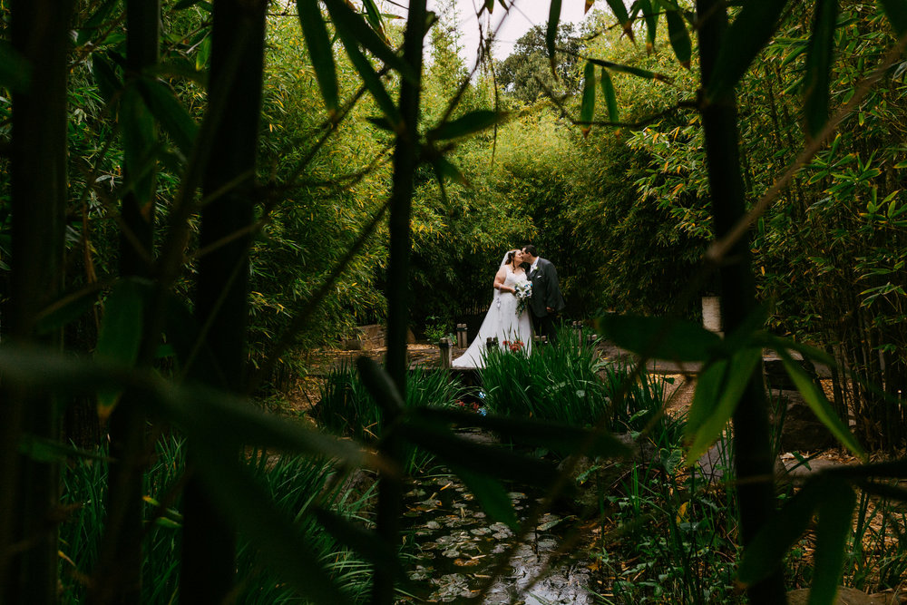 Adelaide Zoo Wedding in the Rain 061.jpg