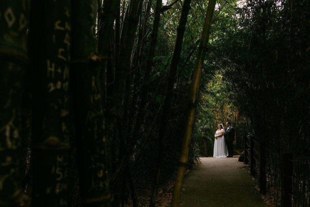 Adelaide Zoo Wedding in the Rain 067.jpg