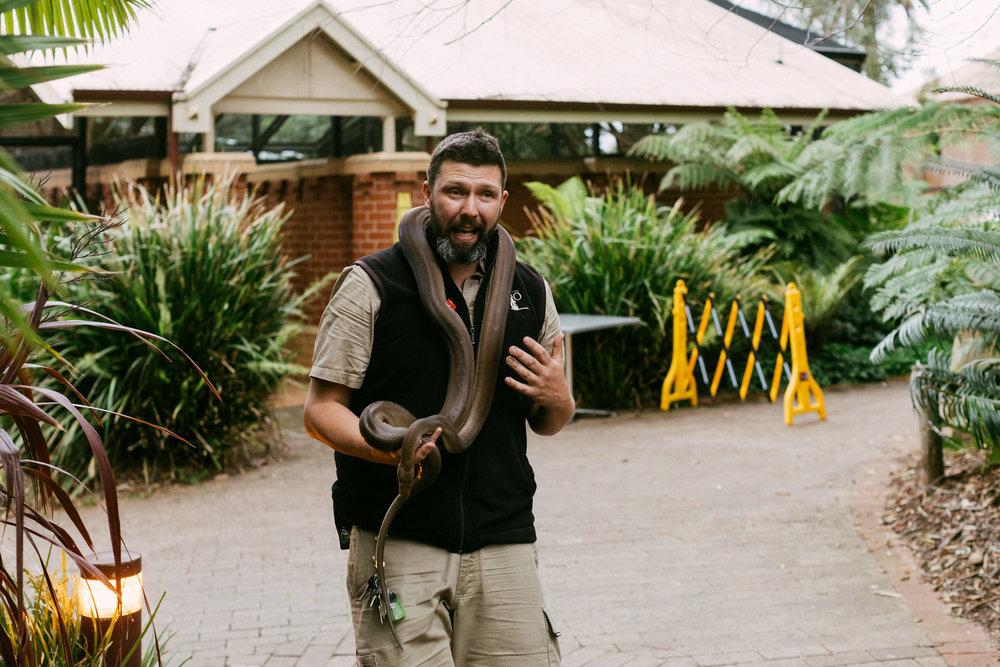 Adelaide Zoo Wedding in the Rain 079.jpg