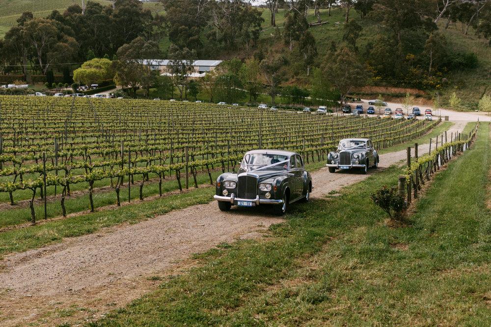 Goldings Winery Wedding SA 073.jpg
