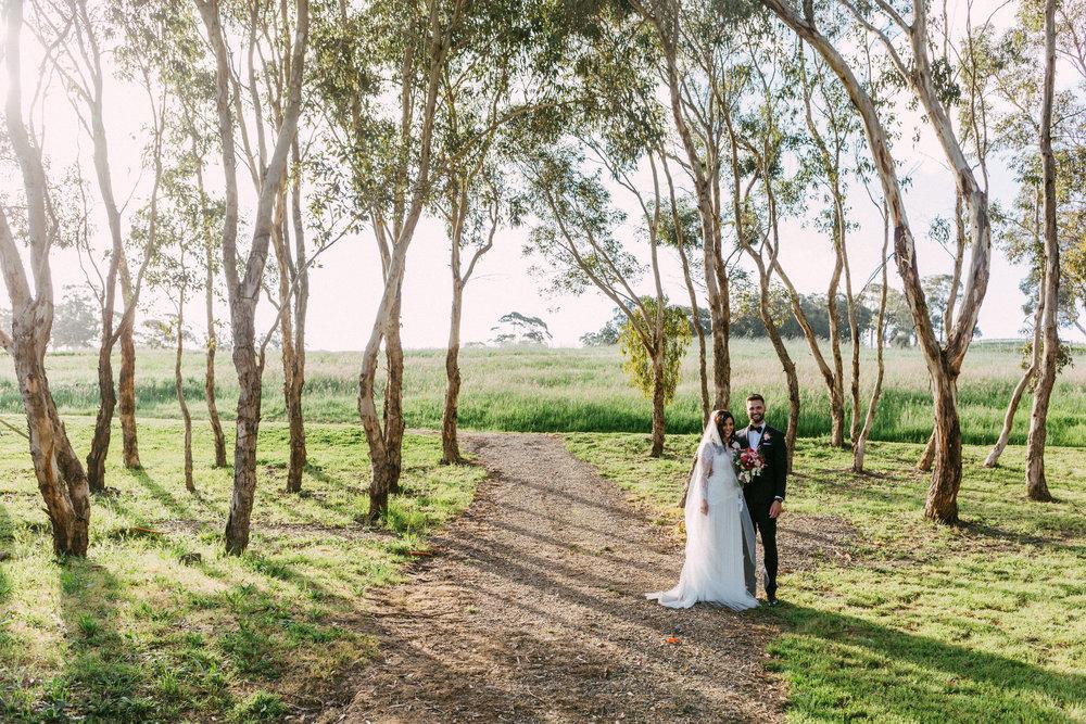 Goldings Winery Wedding SA 135.jpg