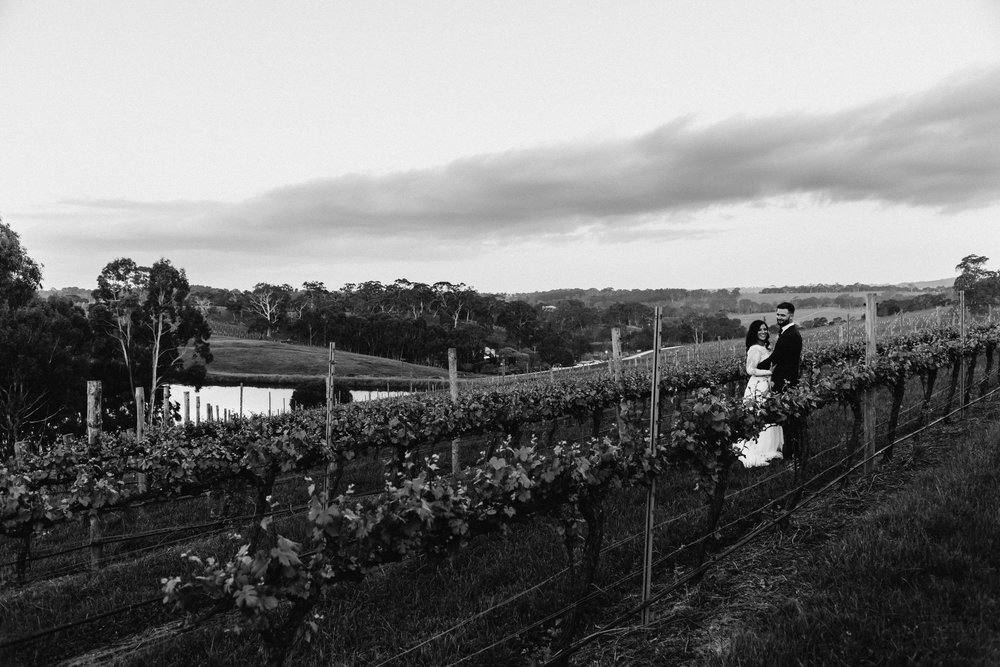 Goldings Winery Wedding SA 174.jpg