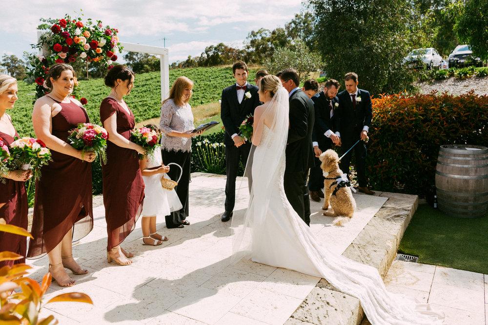 Maximillian Wedding Adelaide Hills 043.jpg